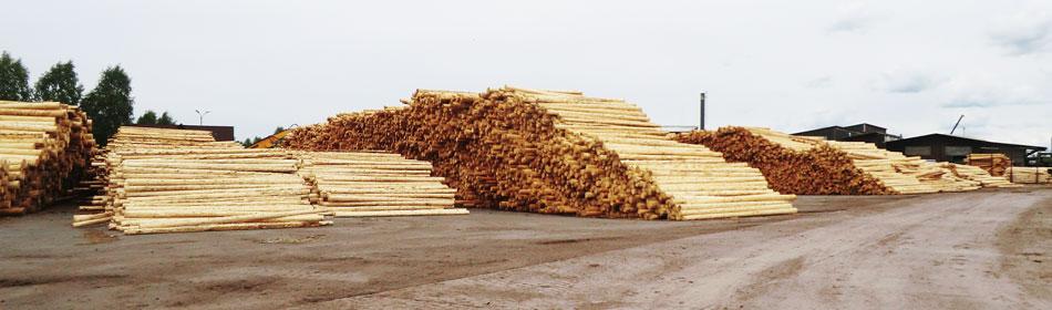 Rechtstreeks uit de houtzagerijen